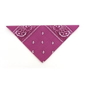 Paisley Bandannas - Bright Purple