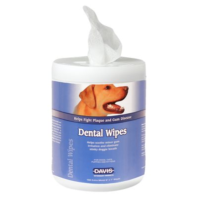 Dental Wipes, 160 Count