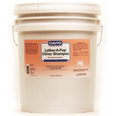Lather-A-Pup Citrus Shampoo, 5 Gallon Bucket